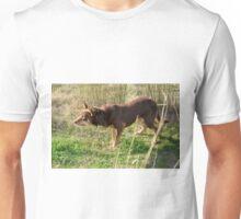 A working dog, Australia. Unisex T-Shirt