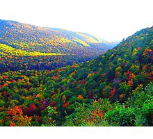 Autumn's Glory Photographic Print