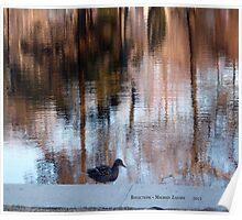"Spring is here ""Reflections"" Wilcox Park Poster"