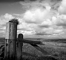 Across the Cheshire plain by Bev Evans