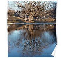 "Spring is here ""Reflections"" Wilcox Park 3 Poster"