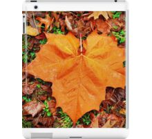 Morning Beauty iPad Case/Skin