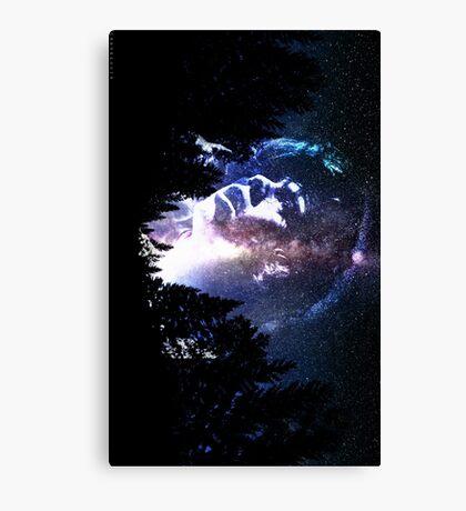 Galaxy Harry Canvas Print