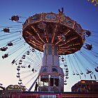 State Fair Swings by Cathryn  Lahm