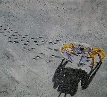 "Ghost Crab by Robert ""Bob"" Rodriguez"