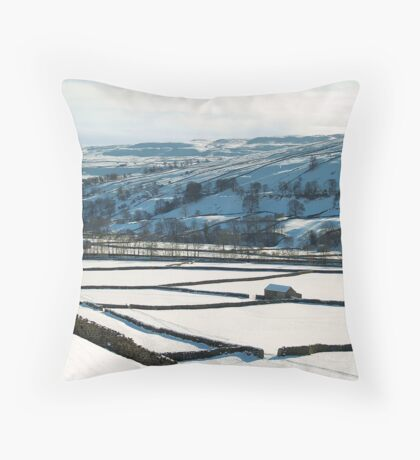Land enclosure Act demonstration Throw Pillow