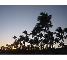 Sunset in the Dominican with palms in silhouette Photographic Print