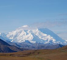 Road to Denali by Eliot  Reed