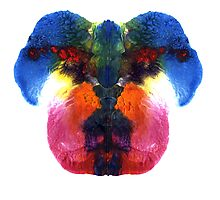Dog head splat Photographic Print