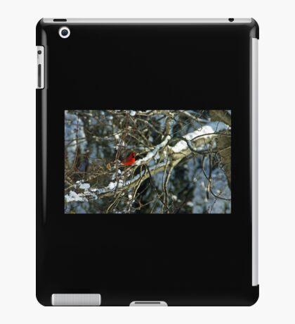 Poetic Winter iPad Case/Skin