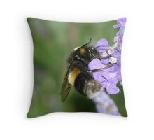 A Cup of Nectar Throw Pillow