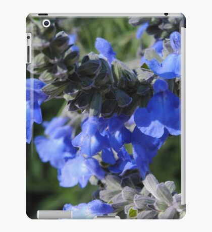 Blue Flowers Tall Stems iPad Case/Skin