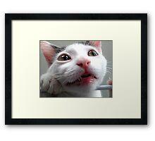 Teething problems Framed Print