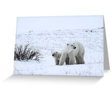 Polar Bear Mother & Cub in the Tundra Greeting Card