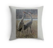 Cherokee Marsh Sandhill Cranes  Throw Pillow