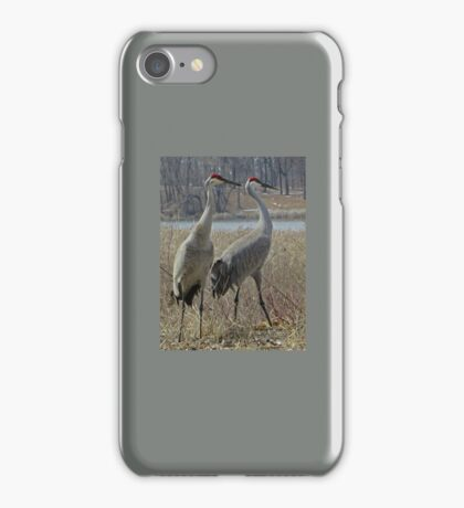 Cherokee Marsh Sandhill Cranes  iPhone Case/Skin