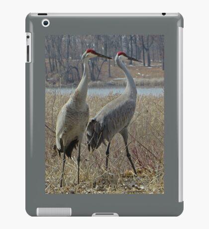 Cherokee Marsh Sandhill Cranes  iPad Case/Skin