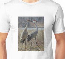 Cherokee Marsh Sandhill Cranes  T-Shirt