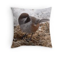 Boreal Chickadee  2 Throw Pillow