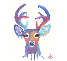 Colorful Deer Head Photographic Print