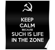 Such is Life in the Zone Poster