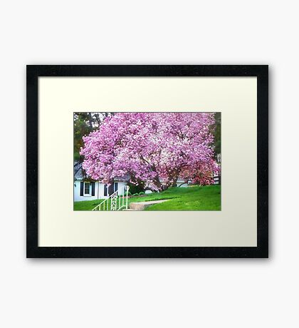 Spring in Bloom Framed Print