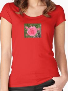 Pink Rose Carnation Flower Women's Fitted Scoop T-Shirt