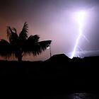 Lightning Branches by JordanRyan
