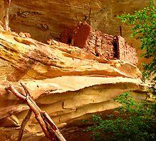 Anasazi Cliff Dwelling - Utah by Rick Schafer