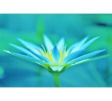 blue daze Photographic Print