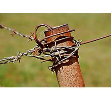 Barbed Containment Photographic Print