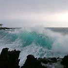 Blue Hawaii by diverdan0