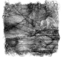 The Atlas of Dreams - Plate 13 (b&w) by Richard Maier