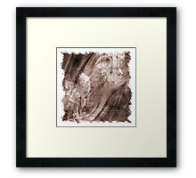 The Atlas of Dreams - Plate 14 Framed Print