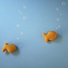 Just Keep Swimming by Jacquelyne Drainville