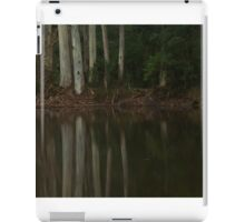 Grey Reflections  iPad Case/Skin