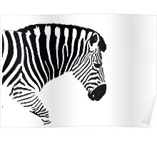What Colour's your Zebra! Poster
