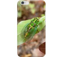 April Green Cicada - NZ iPhone Case/Skin