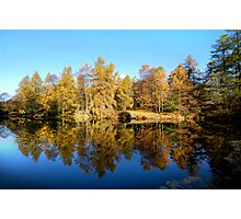 Finsthwaite Tarn - Lake District - Cumbria  Photographic Print