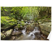 Little cascades in the Fornant river Poster