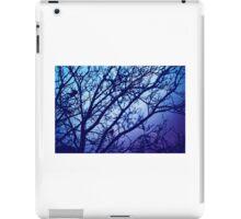 blue trees birds in winter iPad Case/Skin
