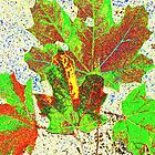 AUTUMN LEAVES DIGITAL/COLLECTION by Shoshonan