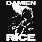 Damien Rice by NostalgiCon