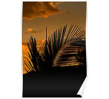 Sultry Evening Sunset..... Poster