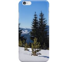 Little Pine Forest - Impressions of Mountains iPhone Case/Skin