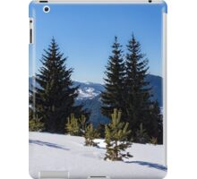 Little Pine Forest - Impressions of Mountains iPad Case/Skin