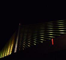 Sunshine Skyway Bridge  by Adria Bryant