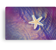 Sea Star. Memory of the Sunny Days in Tropics Canvas Print