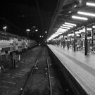 Central Station, Sydney. by Brett Rogers