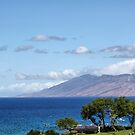 View from Wailea Road #1, Maui, Hawaii by Teresa Zieba